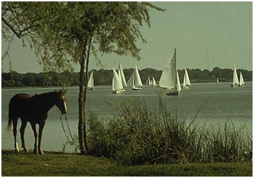 7white-rock-lake_1972_EPA