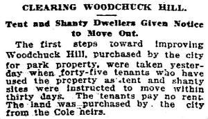 woodchuck-hill_dmn_031215