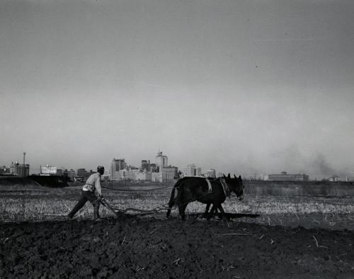 mydans_lucius-washington_smithsonian_1939