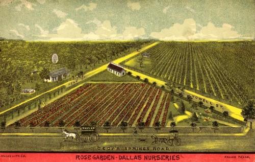 howell_rose-garden_1888