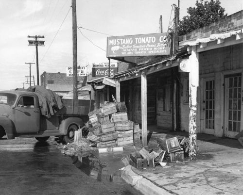 cadiz-businesses_1958_portal
