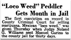 first-conviction_marijuana_dmn_020631