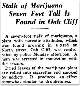 marijuana_dmn_080734