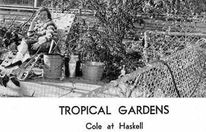 tropical-gardens_ndhs_1963-yrbk