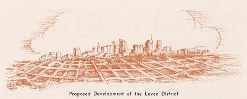 levee-development_your-dallas-of-tomorrow_portal