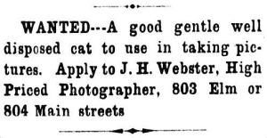 cat-wanted_dallas-herald_112387