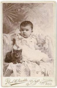 cat_baby_degolyer