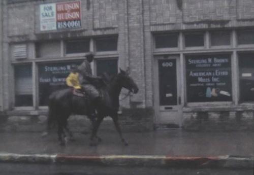 sfot_rain_1967_wbap_unt_horses_sidewalk