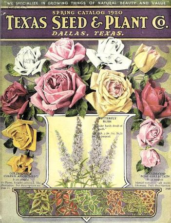 1920tx-seed-floral_1920_flowers