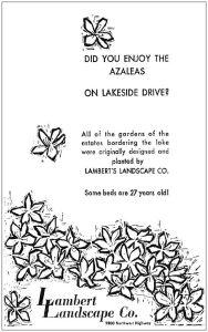azaleas_041763_lamberts-ad