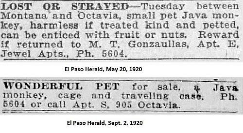 gonzaullas_el-paso-herald_1920-ads_monkey