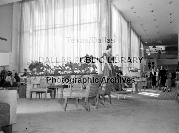 n-m_preston_DPL_1954_hayes-collection