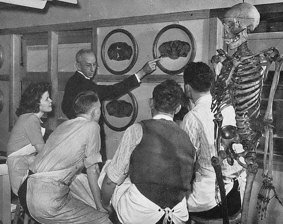 southwestern-medical-college_1944 yrbk_students_dr-w-w-looney_anatomy
