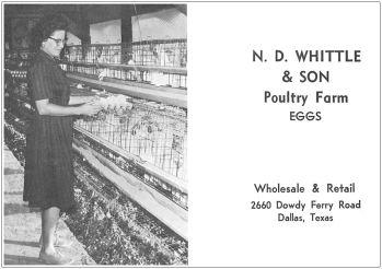 spruce-high-school_1967-yrbk_whittle-and-son-poultry-farm
